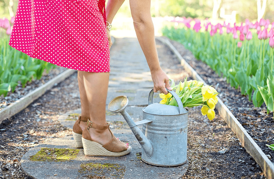 How to easily maintain your garden